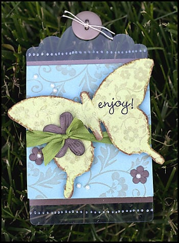052508 Butterfly Card